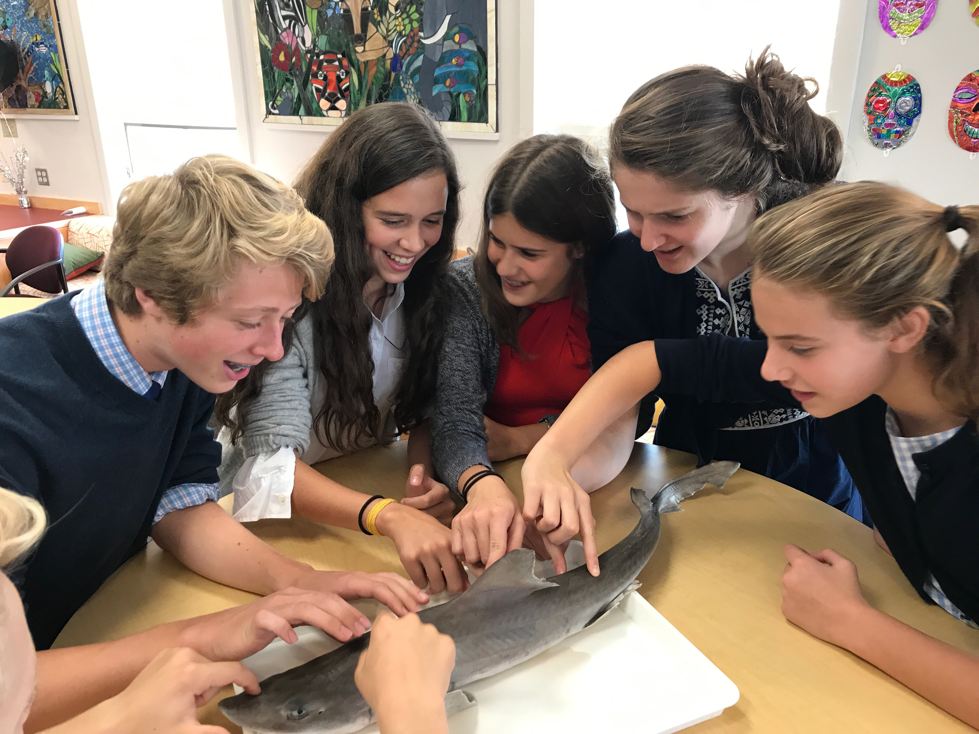 Rectory offers many hands-on experiences in the middle school.
